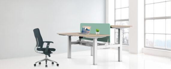 Edesk Ergologic Manual Height Adjustable Desk India Mumbai delhi