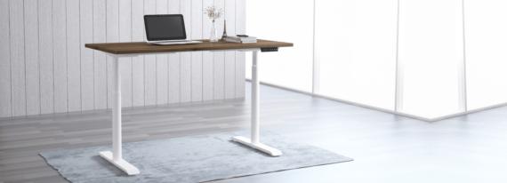 EDesk India Ergologic Height Adjustable Desk Frame1